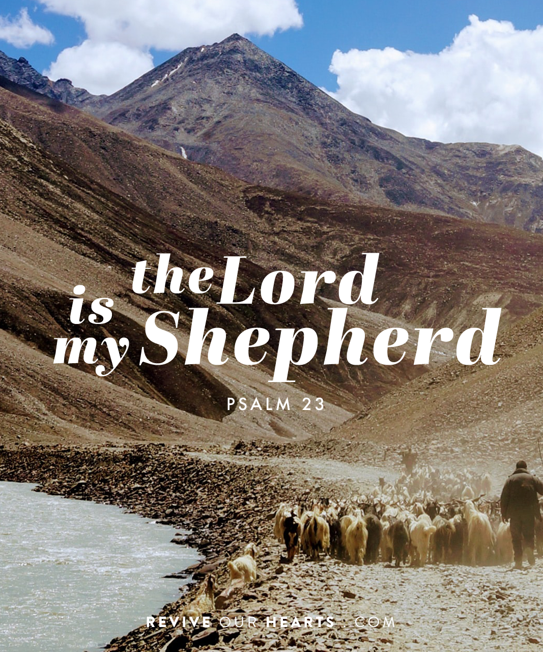 The Lord Is My Shepherd Psalm 23 Revive Our Hearts Season